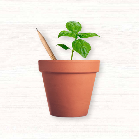 gadget Matita Sprout